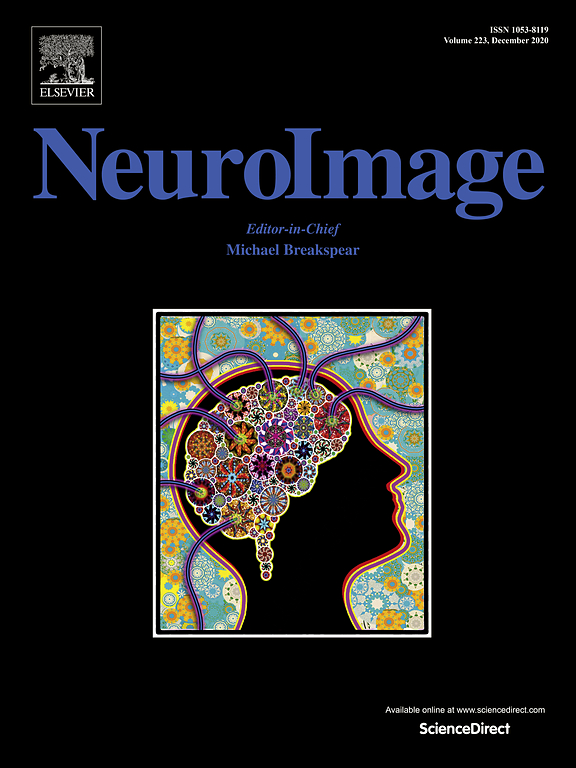 Neuroimage paper on our new OPM sensor