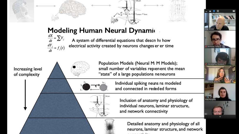 Workshop by Stephanie Jones on the Human Neocortical Neurosolver